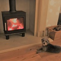 Pooch Enjoying the Wood Burning Stove